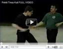 Tuhon Leslie Buck from the Tactical Arts Academy of Austin, Texas demonstrating Filipino Kali with single stick, double stick, knife and empty hands.